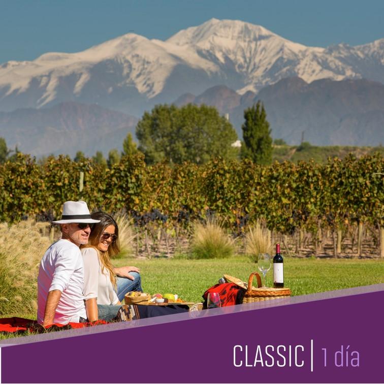 un día en Mendoza